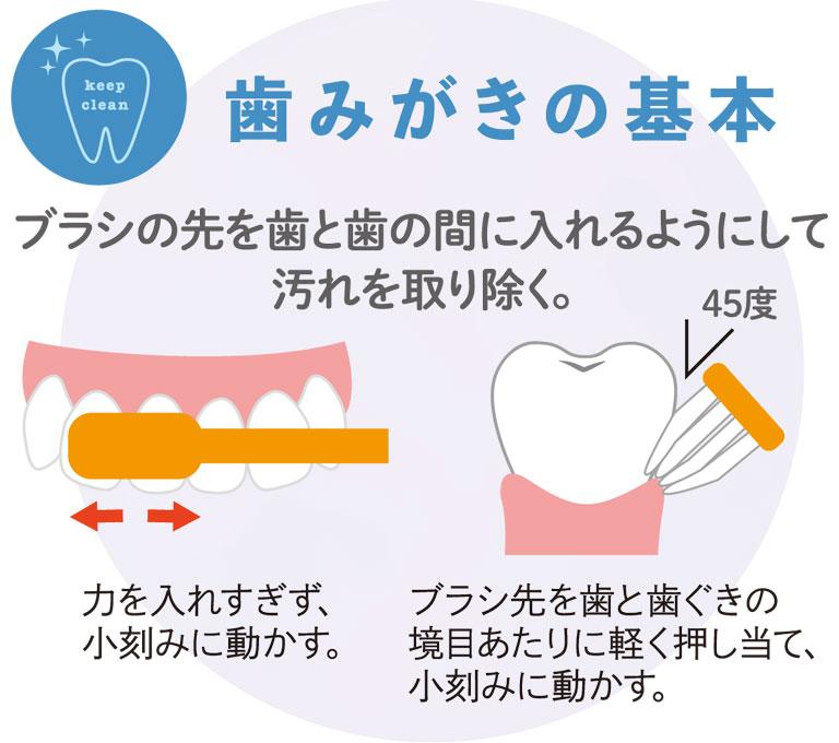 歯みがきの基本